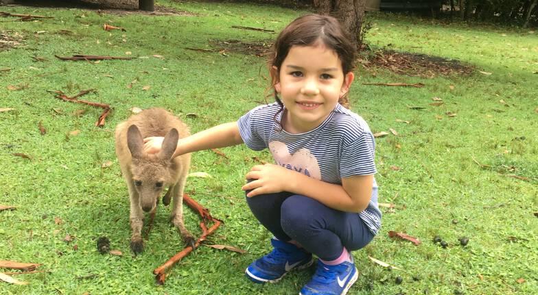 batemans bay tour young girl feeding kangaroo