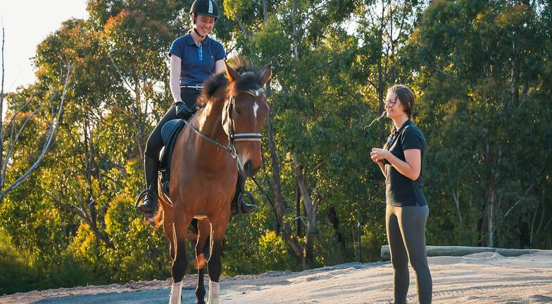 1 Hour Private Horse Riding Lesson and 2 Hour Trail Ride