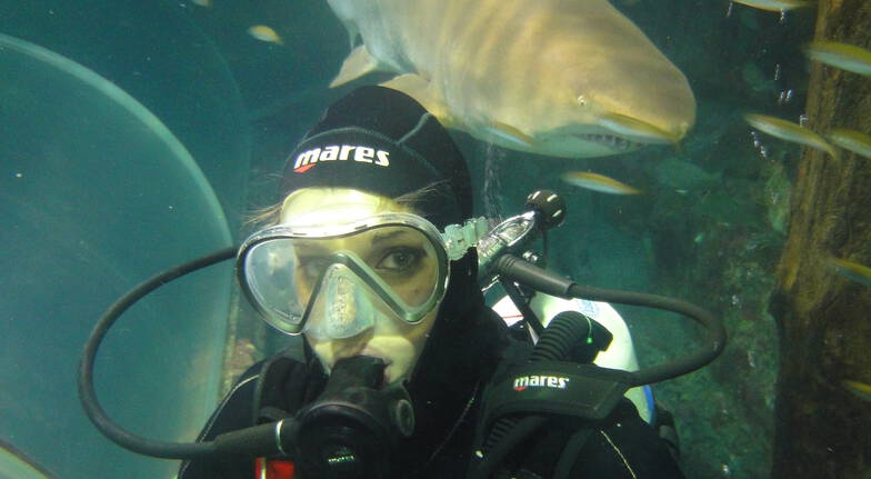 Shark Diving at Manly SEA LIFE Sanctuary - Weekend