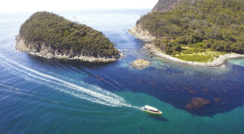 Bruny Island Coastal Wilderness Tour - Full Day