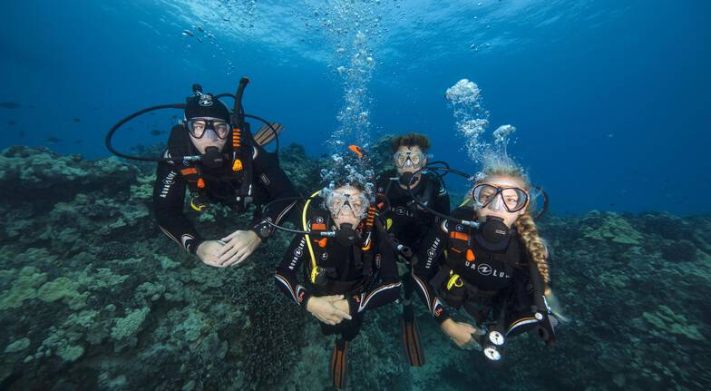Introduction to Scuba Diving in Sydney - Half Day