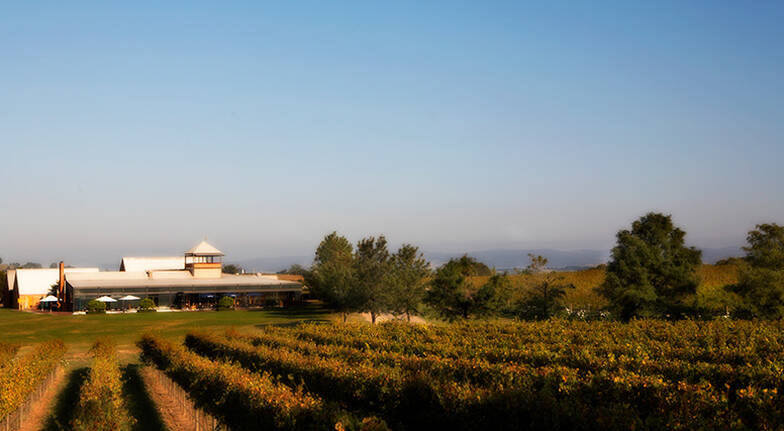 Yarra Valley Rochford Wines Segway Tour with Dinner - For 2