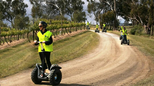 Yarra Valley Rochford Wines Segway Tour - For 2