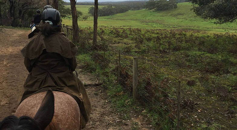 Otway National Park Private Horse Riding Tour  For 2