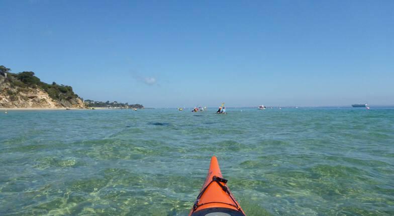 Sorrento Dolphin Sanctuary Sea Kayak Tour - Full Day