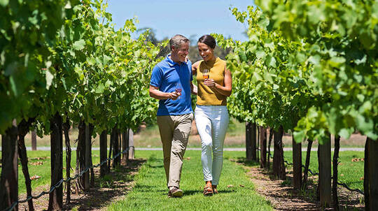 2 Night Adelaide City Stay with Barossa Valley Tour - For 2