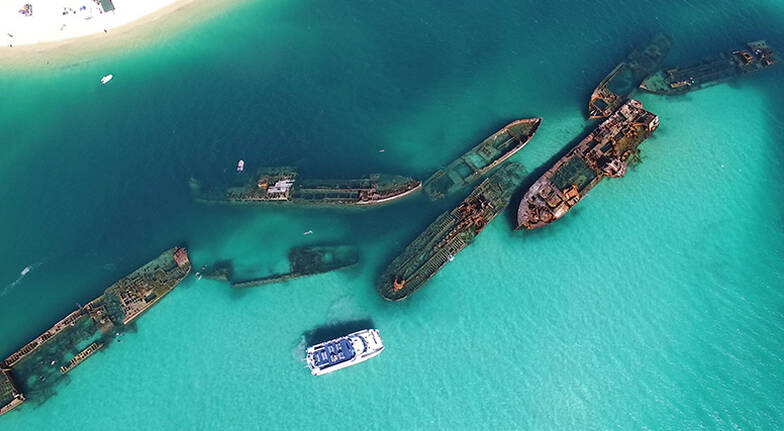 Dolphin Cruise to the Tangalooma Wrecks  For 2