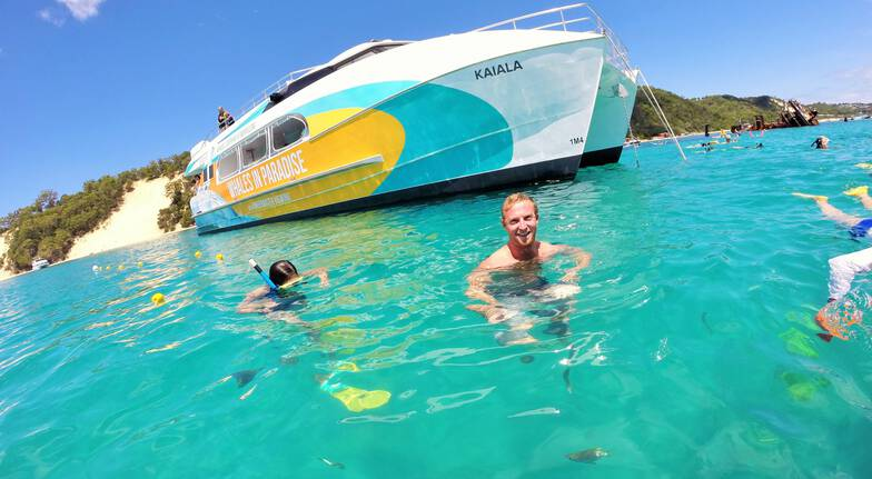 Dolphin Cruise to the Tangalooma Wrecks