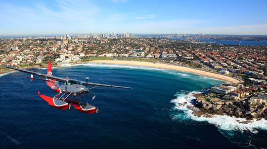 Seaplane Flight with Shark Island Picnic - For 2