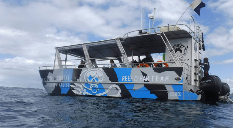 Discover Diving Sunshine Coast