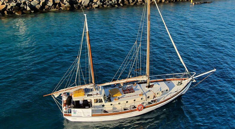 Mooloolaba Cultural Cruise with Seafood Lunch  2 Hours