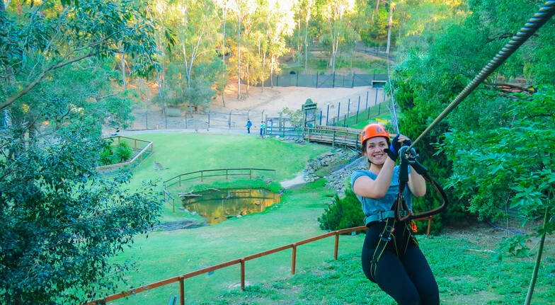 Zipline Adventure and Entry to Currumbin Wildlife Sanctuary