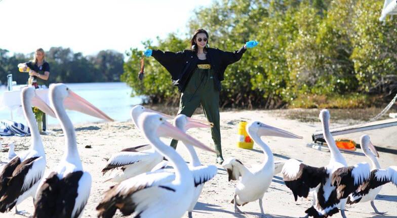women posing with pelicans tweed river