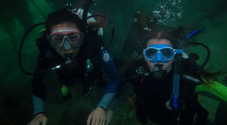 Phillip Island Intro to Scuba Diving  3 Hours  For 2