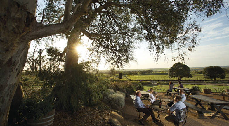Barossa Valley Hop-On-Off Wine Tour - City Return