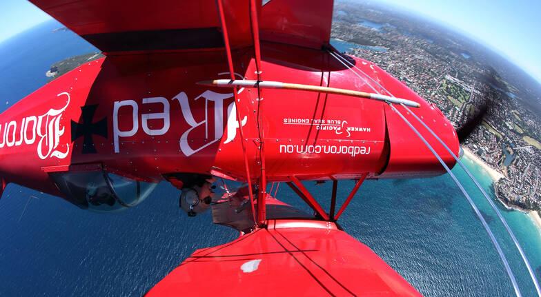 red bull aerobatic plane flying upside down above sydney