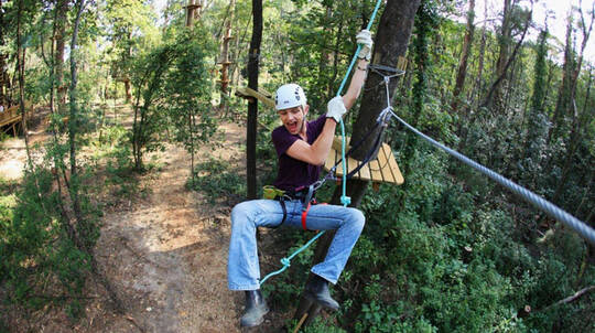 Tree Top Adventure and Zip-Trek Experience - Sydney