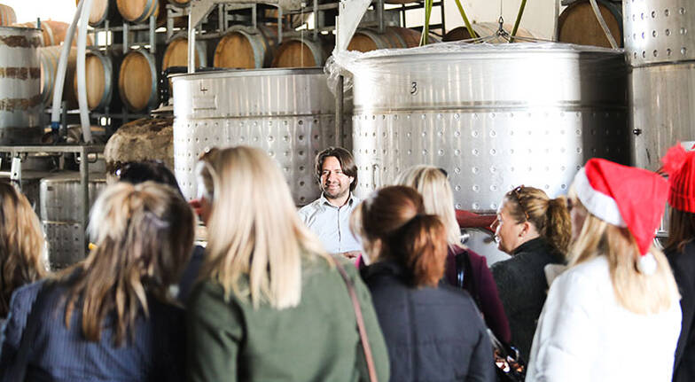 Guided Tour with Wine, Beer and Cider Tastings - 45 Minutes