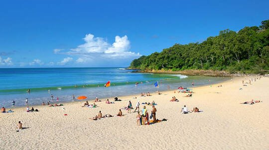 Noosa Day Tour with 2 Course Lunch