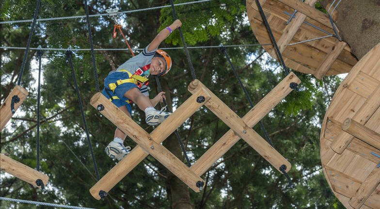 Children's Treetop Adventure Course - Ages 3-9