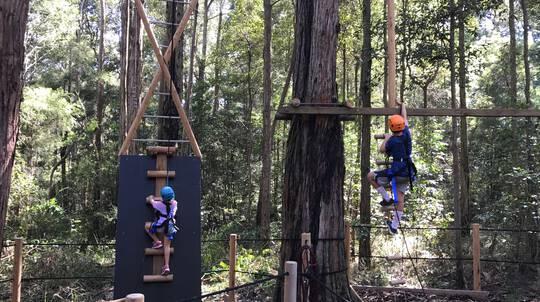 TreeTops Vertical Challenge