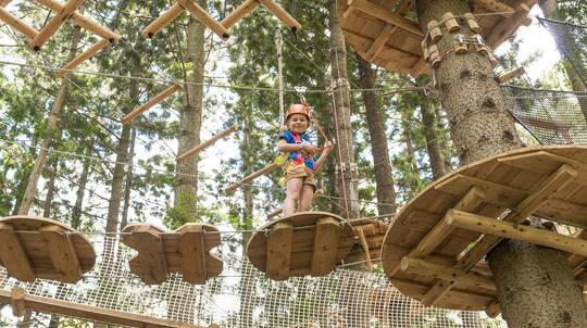 Children's Treetop Adventure Course - Newcastle