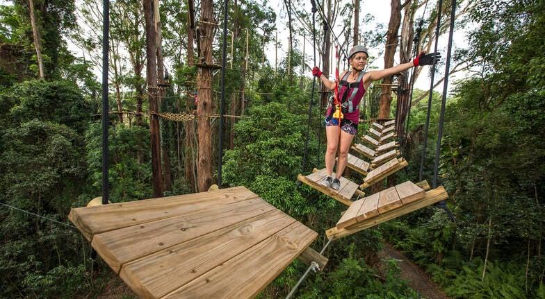High Ropes and Flying Fox Adventure - Sunshine Coast