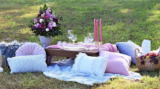 Romantic Picnic in the Park Proposal Package