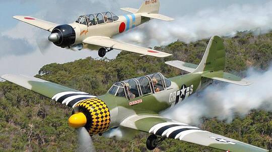 Aerobatic Warbird Adventure Flight In A YAK52 - 25 Minutes