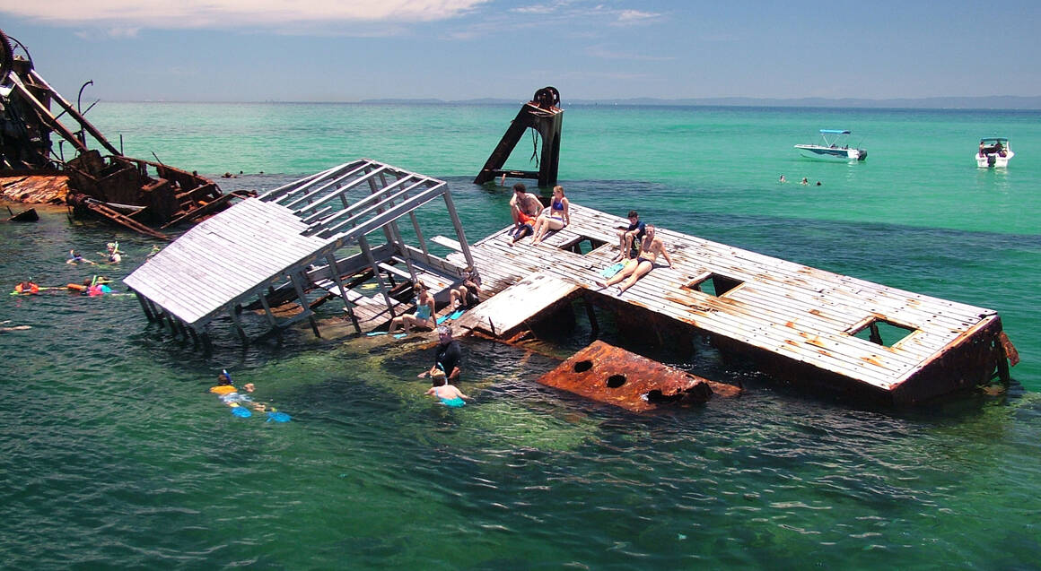 Dolphin cruise group at Tangalooma Wrecks