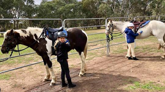 Horse Riding Lesson - 60 Minutes