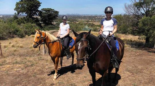 Advanced Horse Riding Tour - 2 Hours