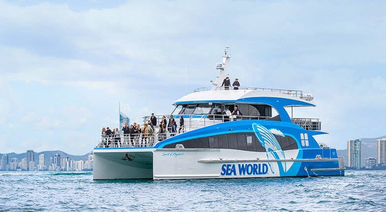 Whale Watching Cruise - 2.5 Hours
