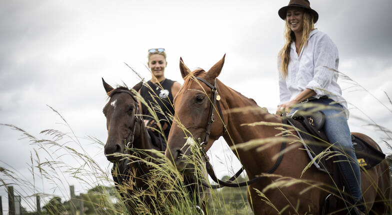 Horse Riding Tour at The Farm Byron Bay