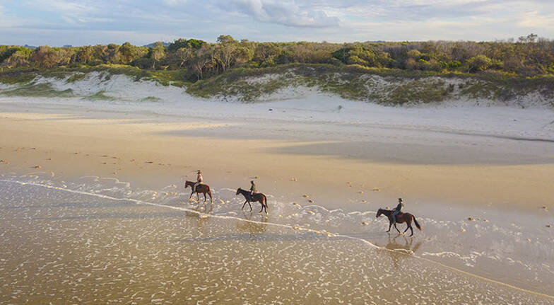 Byron Bay Forest to Beach Horse Trail Ride  2 Hours