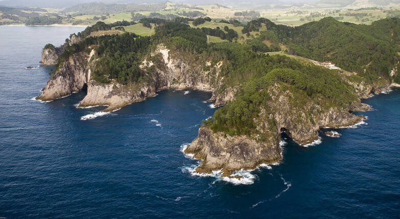 Whangamata and Waihi Gold Mine Helicopter Flight - For 2