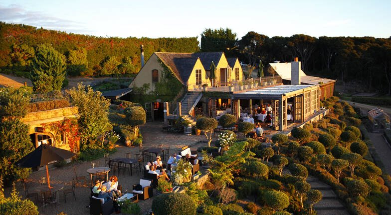 Waiheke Island Winery Tour with Tastings