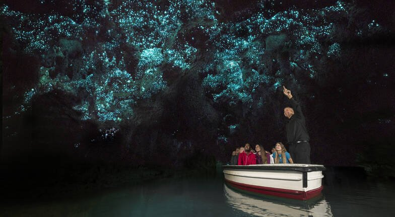 Waitomo Glowworm Caves Day Tour with Boat Ride