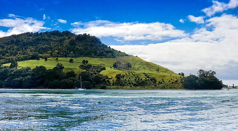 Tauranga Scenic Harbour Cruise - 60 Minutes