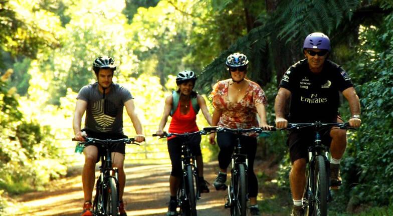 Rimutaka Cycle Trail Mountain Bike Adventure