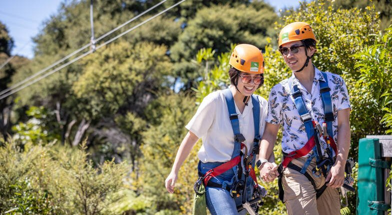 Flying Fox Zipline and Forest Walk with Transfers