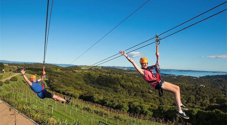 Flying Fox Zipling and Forest Walk on Waiheke Island