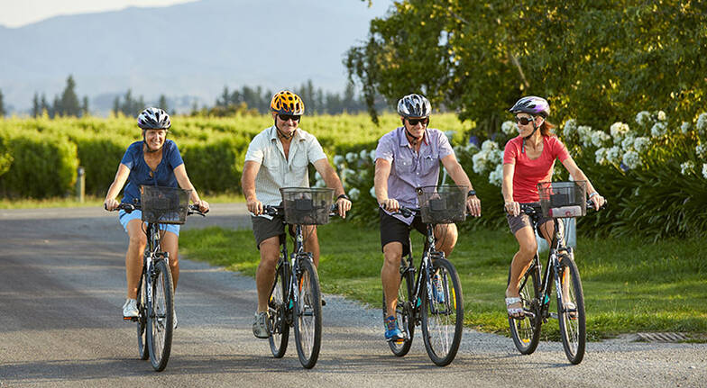 Morning Guided and Afternoon Self Guided Winery Bike Tour