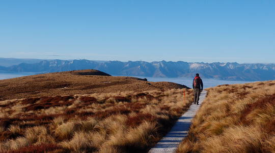 Epic Private Fiordland Adventure - Fish Fly and Hike - For 2