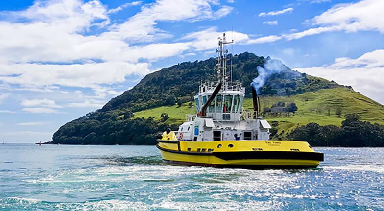 Tauranga Scenic Harbour Cruise  60 Minutes