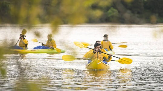 Guided Kayak Glow Worm Tour at Lake Karapiro