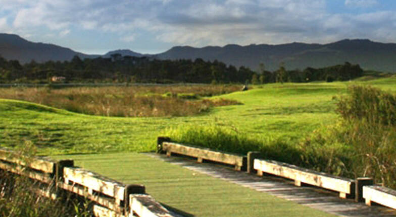 Matakana Golf and Fishing Day Tour