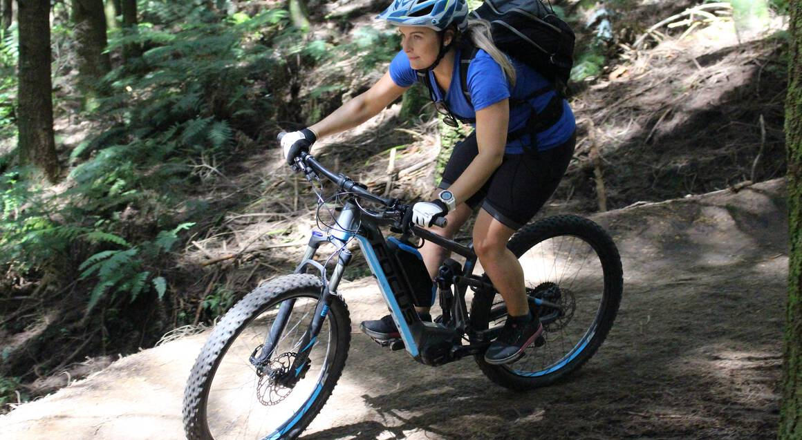 Redwoods Forest E-Bike Half Day Tour
