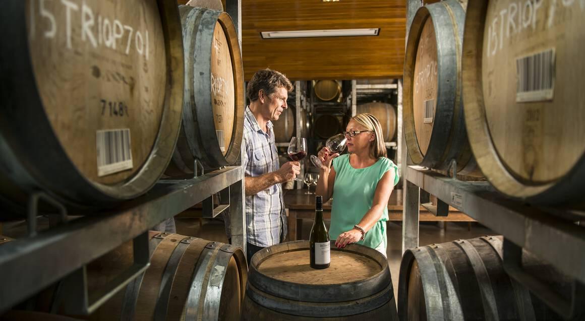Marlborough Wine Tour and Cruise