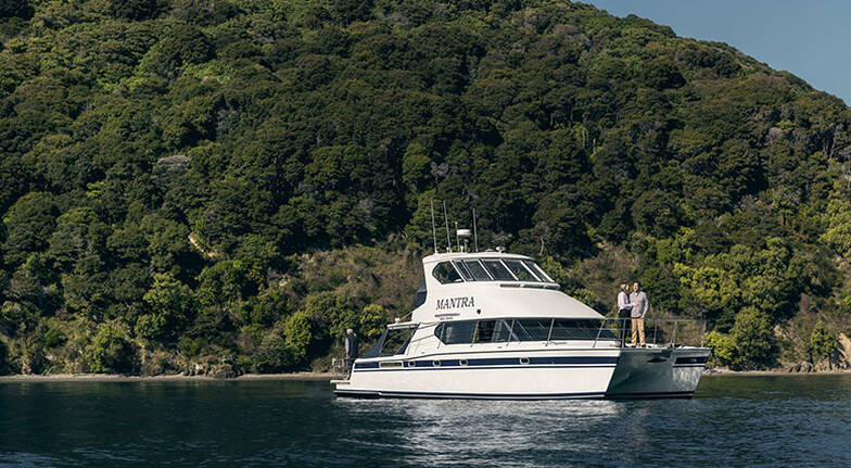 Queen Charlotte Sound Nature Cruise with Bagel - 3 Hours